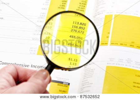Magnifier Over Figures