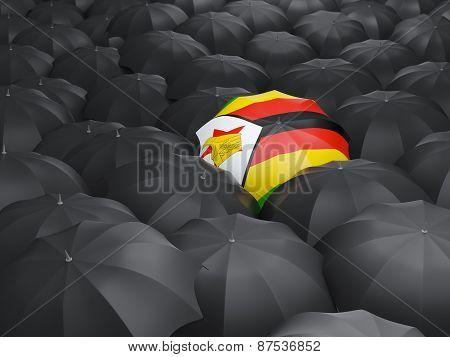 Umbrella With Flag Of Zimbabwe