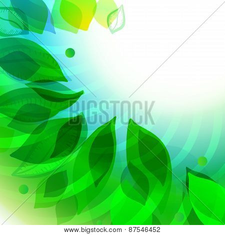 Modern Spring Background With Leaves