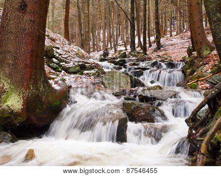 Spring forest waterfall