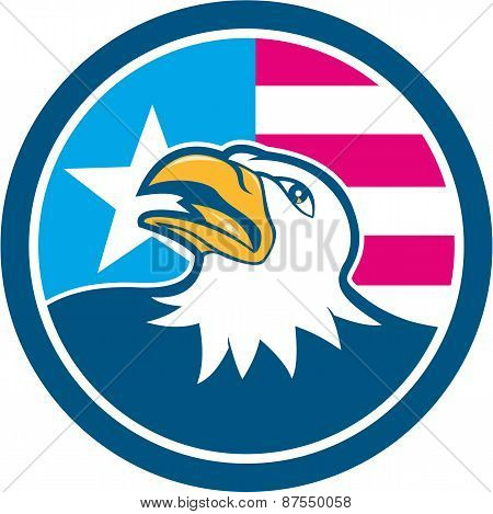 American Bald Eagle Head Flag Side Cartoon