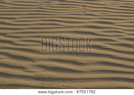 Wavy texture of bright yellow coral sand for background