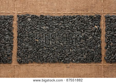 Black Sunflower Seeds On Sackcloth, With Place For Your Text