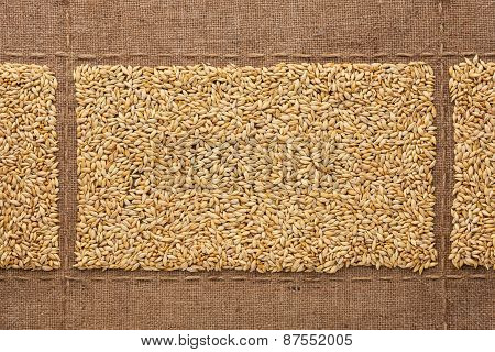 Barley Grains On Sackcloth, With Place For Your Text