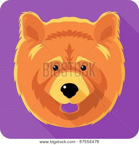 dog chow-chow icon flat design