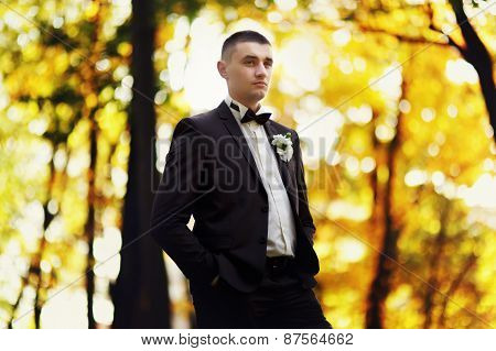 Portrait Of A Serious Groom With Butterflies