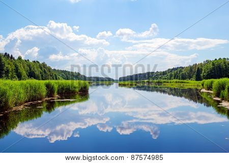 Forest river landscape with clouds reflection in the water.