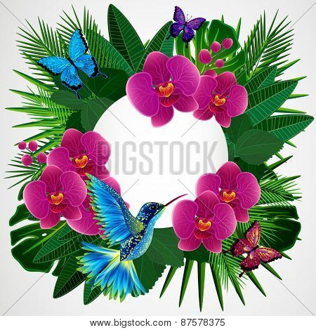 Floral design background. Orchid flowers with bird, butterflies.