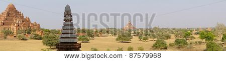 Panorama, Temples And Stupas