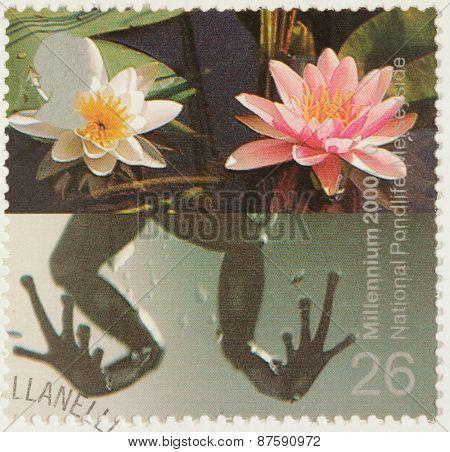 Pondlife Stamp