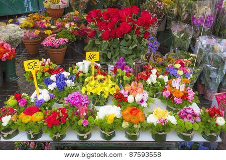 Colorful flowers on display on a market in Rome, Italy