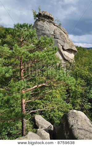 Rock over wood.