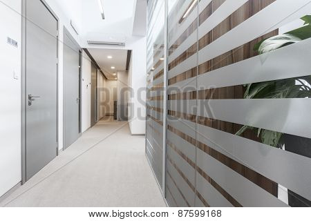Empty Passageway In Business Office