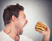stock photo of obese man  - Insatiable and hungry man eating a sandwich - JPG