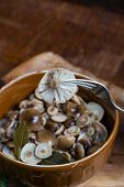 picture of fungus  - Marinated honey fungus in brown bowl on wooden table - JPG