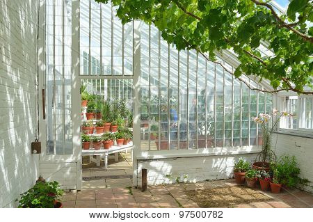 Beautiful old greenhouse