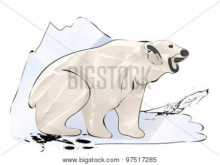 Polar Bear And Ice