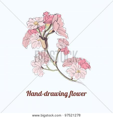 Vector hand-drawing flower. Page and postcard decoration element. Decoration for parfume bottles. Fl