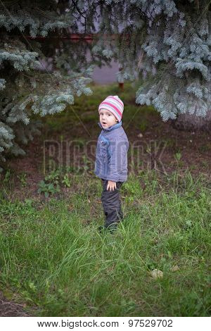 very cute little boy on a walk