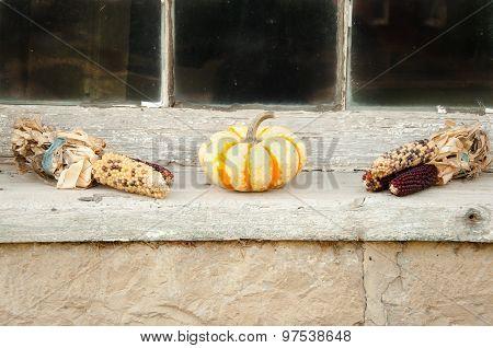 pumpkin and indian corn