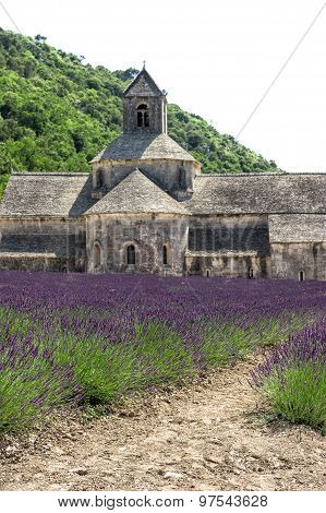 Senanque Abbey With Lavender Field. Mediterranean Landscape