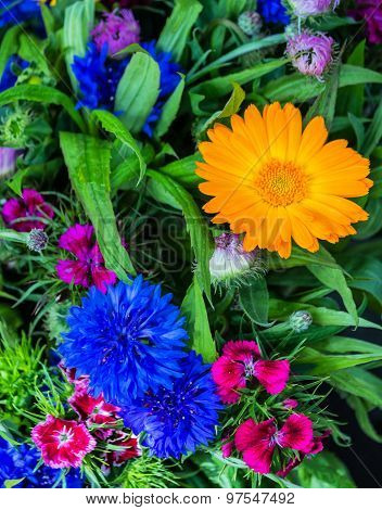 Bouquet with cornflowers and gerbera daisy