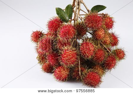 asian fruit rambutan on the plain background