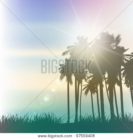Palm trees landscape with a vintage effect