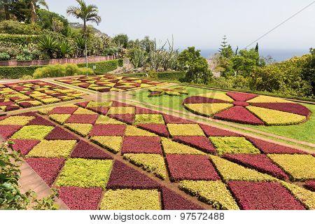 Botanical Garden Of Funchal, Madeira Island