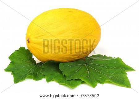 honeydew melon isolated on white