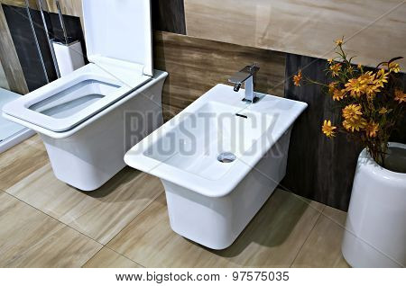 Bidet and Toilet Close Up