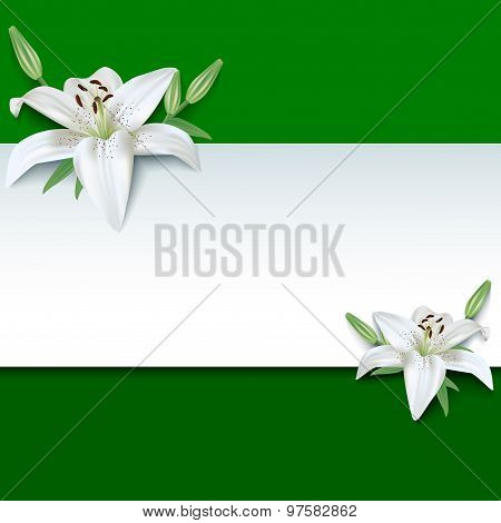 Festive Greeting Or Invitation Card, 3D Flower Lily