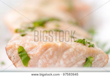 Bbq Salmon Fillets