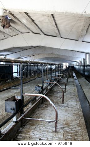 Inside Of Dairy Barn