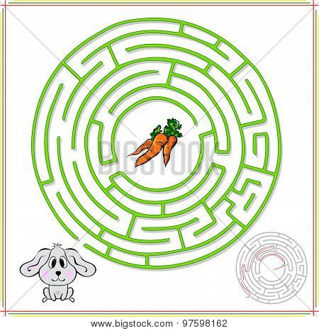 Rabbit Or Hare Must Go To Carrot