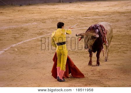 MADRID - AUGUST 8: The torero Antonio Espaliu fights a bull named Lujoso in the Las Ventas bullring on August 8, 2010 in Madrid, Spain.