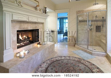 extravagant bathroom with fireplace, glass shower and whirlpool tub