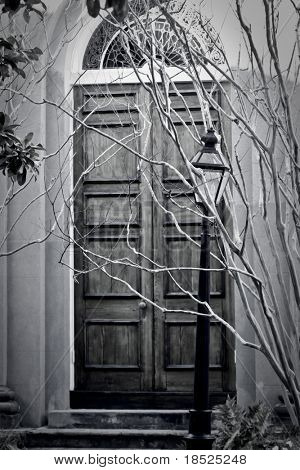 spooky old doors in very subdued cool tone color