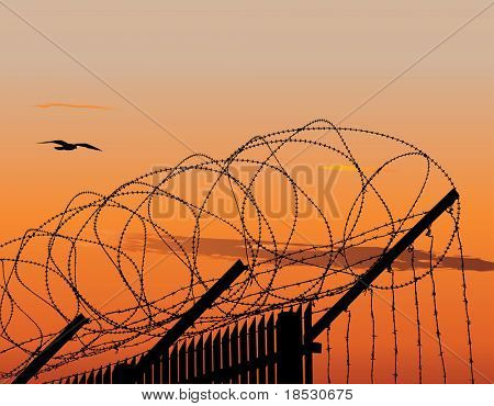 Illustration of metallic fence topped with barbed wire against sunset sky