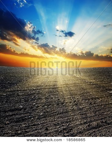 sunset over black field