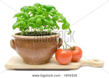 Tomate e manjericão