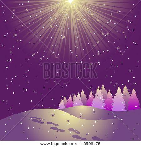 Star shining on the sky