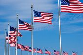 stock photo of washington monument  - US Flags at the Washington Monument in DC - JPG