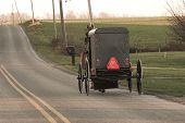 Amish cavalo e buggy, Condado de Chester, país do Dutch de Pensilvânia