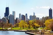 Chicago Skyline Viewed From Lincoln Park poster