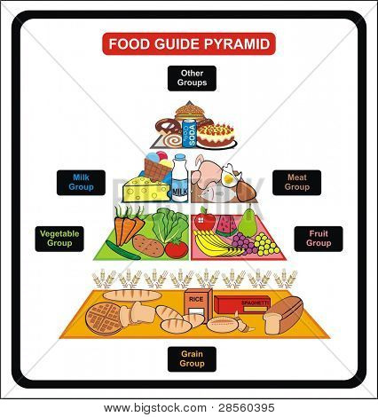 Food Guide Pyramid - Including Groups ( Grain, Fruit, vegetable, milk, meat, other ) - Useful for School , educational Material, Clinics and Diet