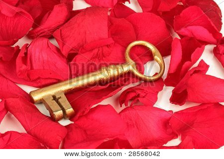 The golden key to success on rose petals