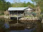 stock photo of bayou  - This cabin in on Alligator Bayou south of Baton Rouge Louisiana - JPG