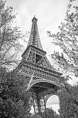 The Eiffel Tower in Paris, France. Black and white image poster