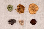 Iboga Root Bark, Syrian Rue, Ayahuasca, Banisteriopsis Caapi, Hawaiian Baby Woodrose, Salvia Divinor poster